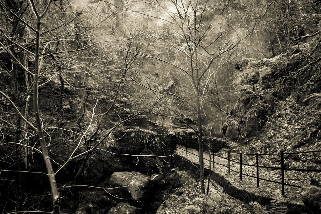 Aira Force bridge
